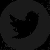 twitter-logo_318-40209.png