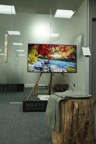 TechNovus London Office Photo3.jpg