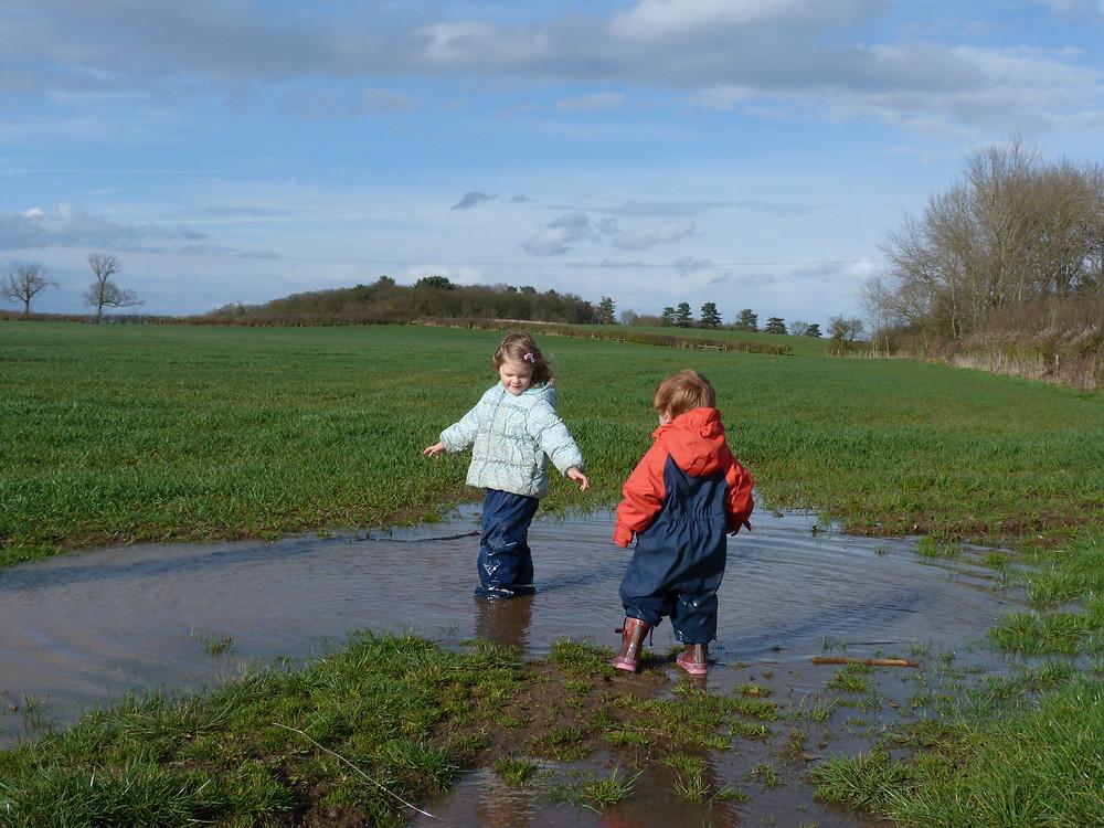 rain sodden fields whatton farm rapeseed oil and spelt flour