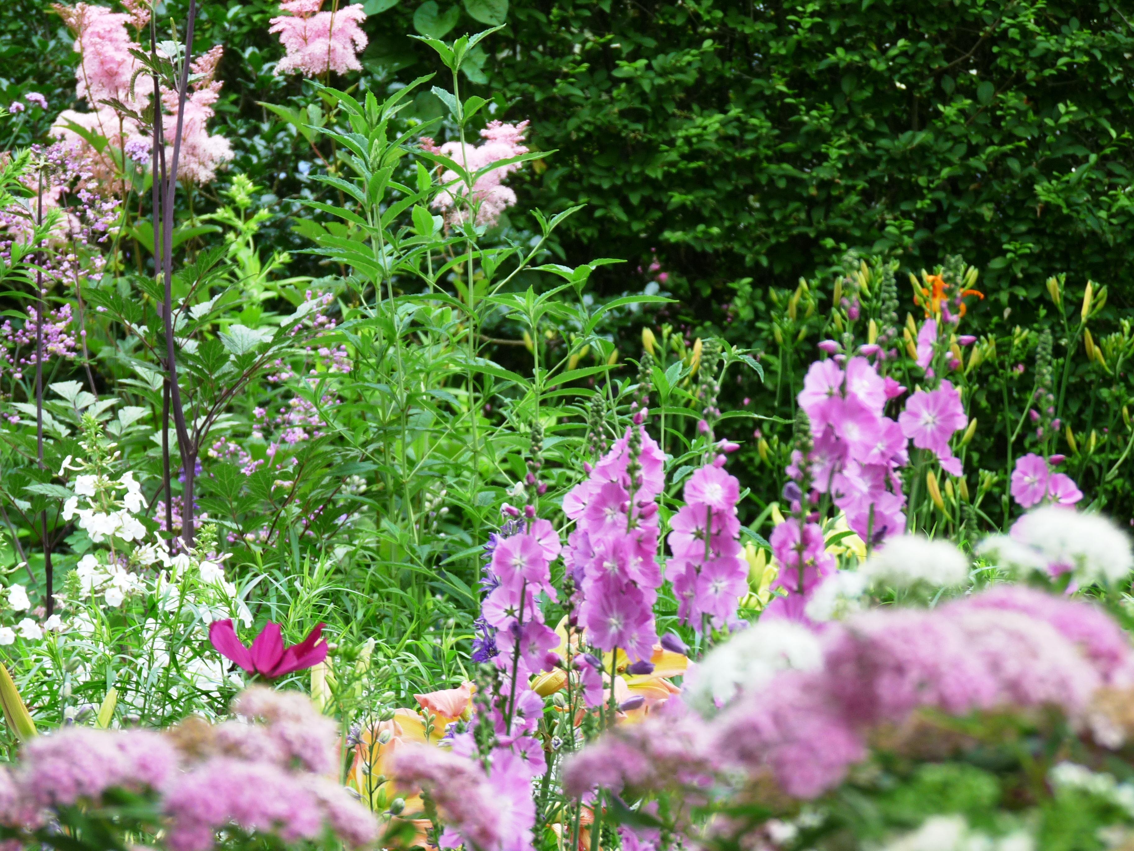 Nantucket Garden Design, Nantucket Landscape design.