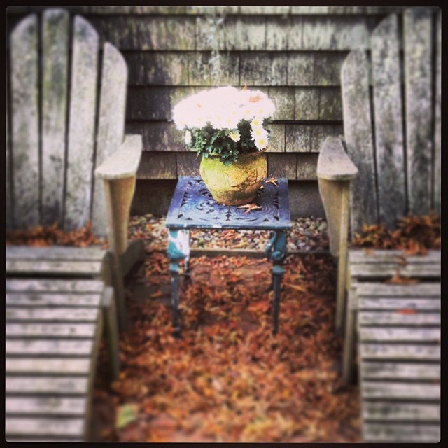 Even distribution of mess looks natural #leaves #nantucket #thegardengroup