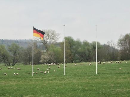 Sheep (2017)