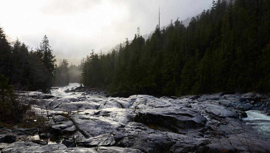 Rocky Grey  Tofino Ucluelet British Columbia