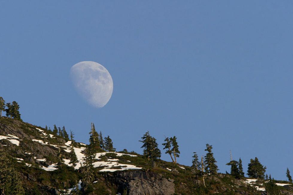 Khutzeymateen Moon  Great Bear Rainforest