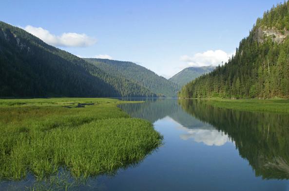 Khutzeymateen Estuary  Great Bear Rainforest
