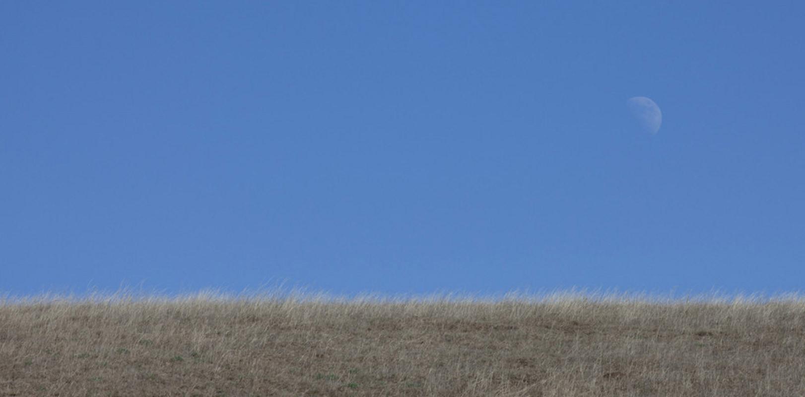 Strawed Moon  Old Coast Hwy #1 Big Sur