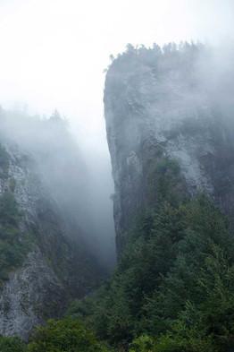 Misty Cliffs  Great Bear Rainforest