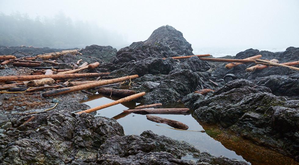 Rocky Point  Tofino British Columbia