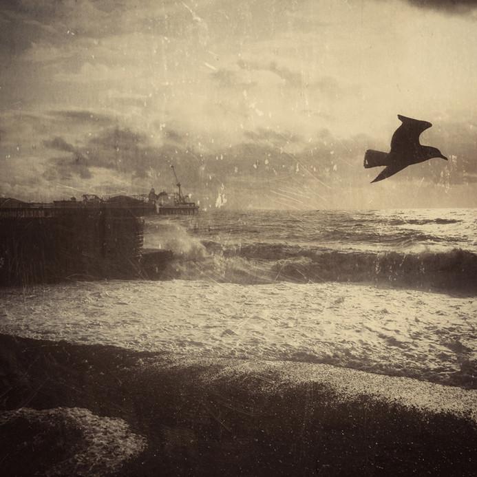 Pathways Brighton Beach