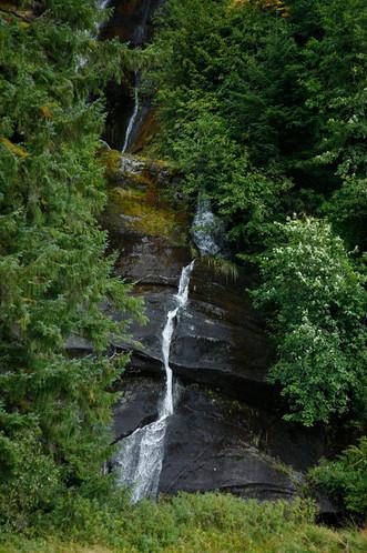 Trickle  Great Bear Rainforest