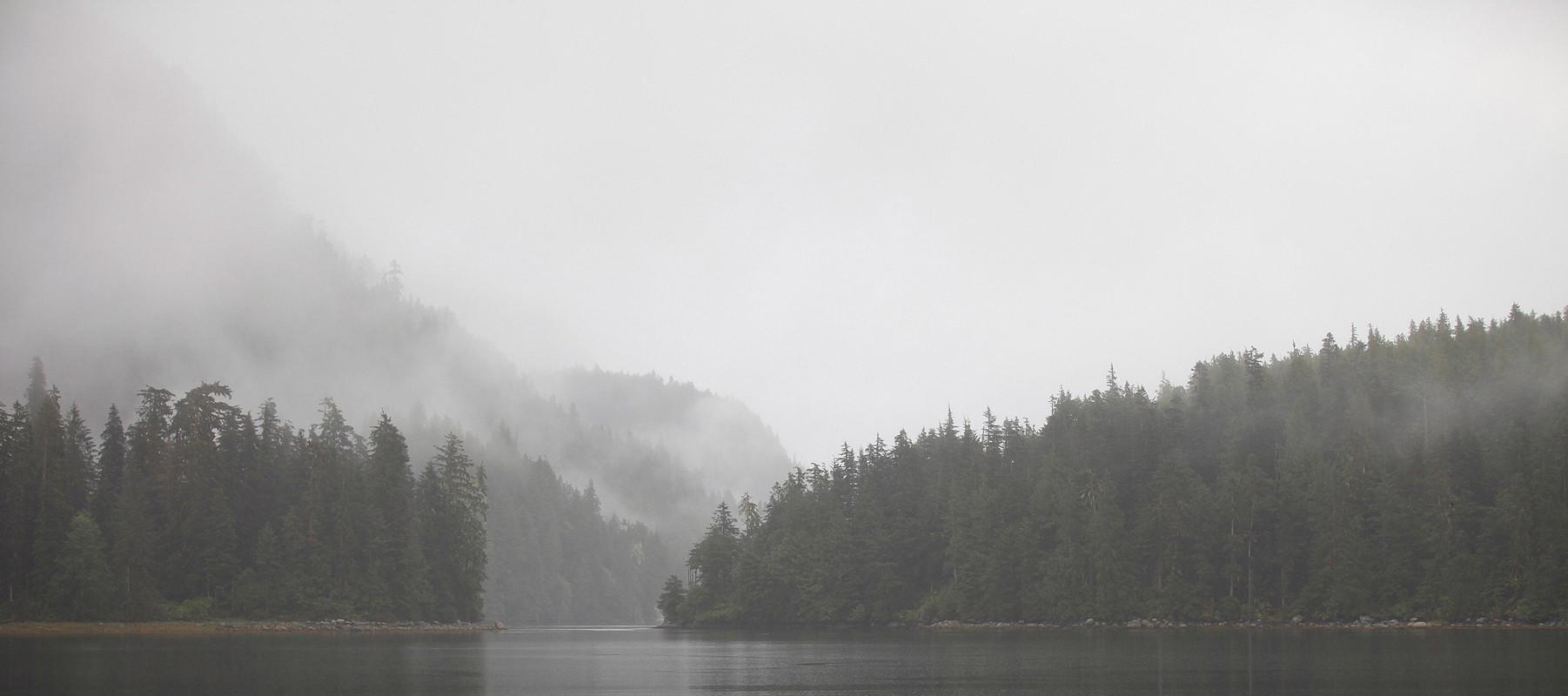 Misty Channels GBR