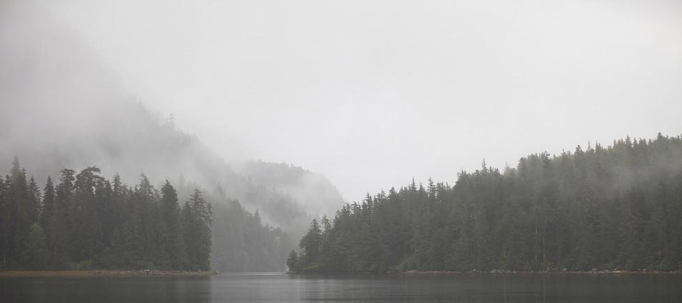 Misty Channels  Great Bear Rainforest