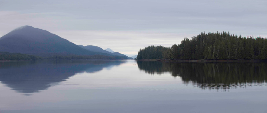 Tranquility  Great Bear Rainforest