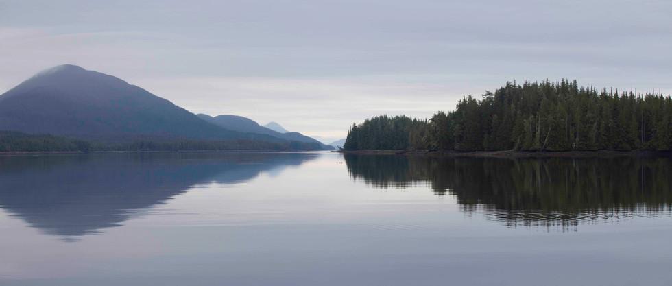 Tranquility  Great Bear Rainforest