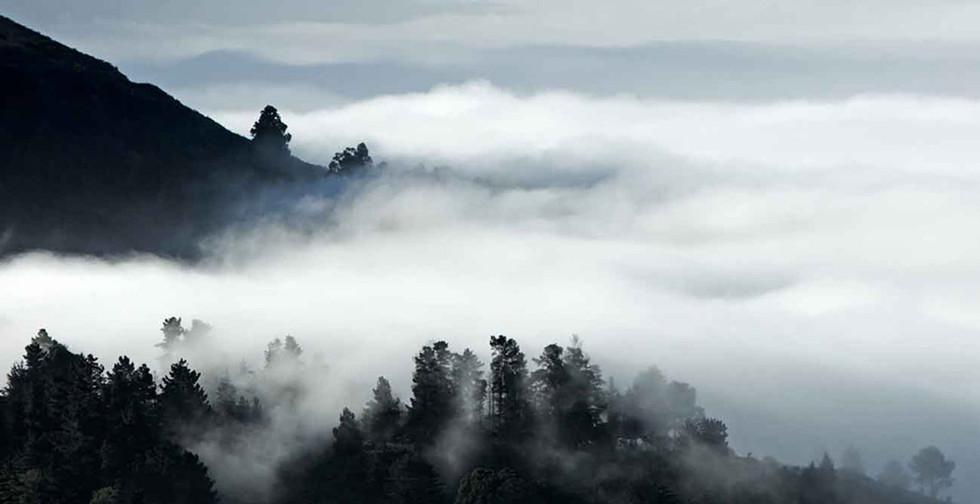 Mountain Mist  Big Sur California