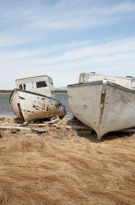 Shipwreck Newfoundland
