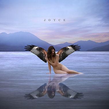 Joyce - Jaquette.jpg