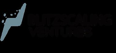 Blitzscaling Ventures 2.png