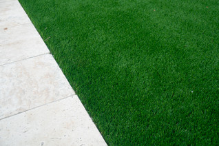 Turf next to pavers_Professional DT phot