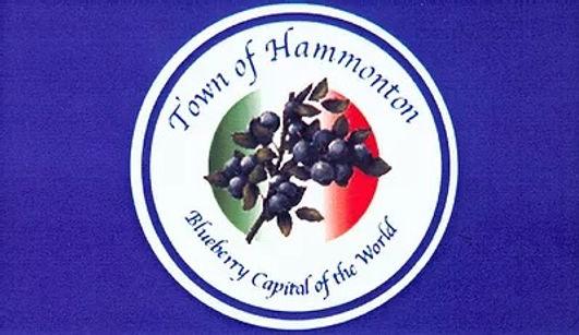 town of hammonton flag.jpg