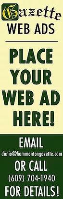 web ads.jpg