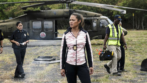 'NCIS Hawai'i' gently mixes up a CBS staple