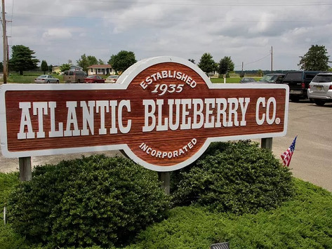 At Atlantic Blueberry Co., experience is measured in decades
