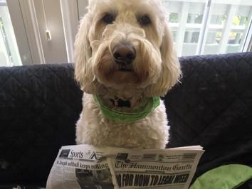 News flash:The Gazette is not a political party