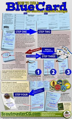 Blue Card Basics