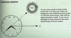 Using a Watch to Find North