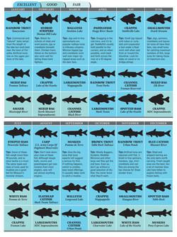 Fish Identification - Missouri