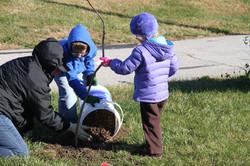 Tree Planting at Belton Community Ce