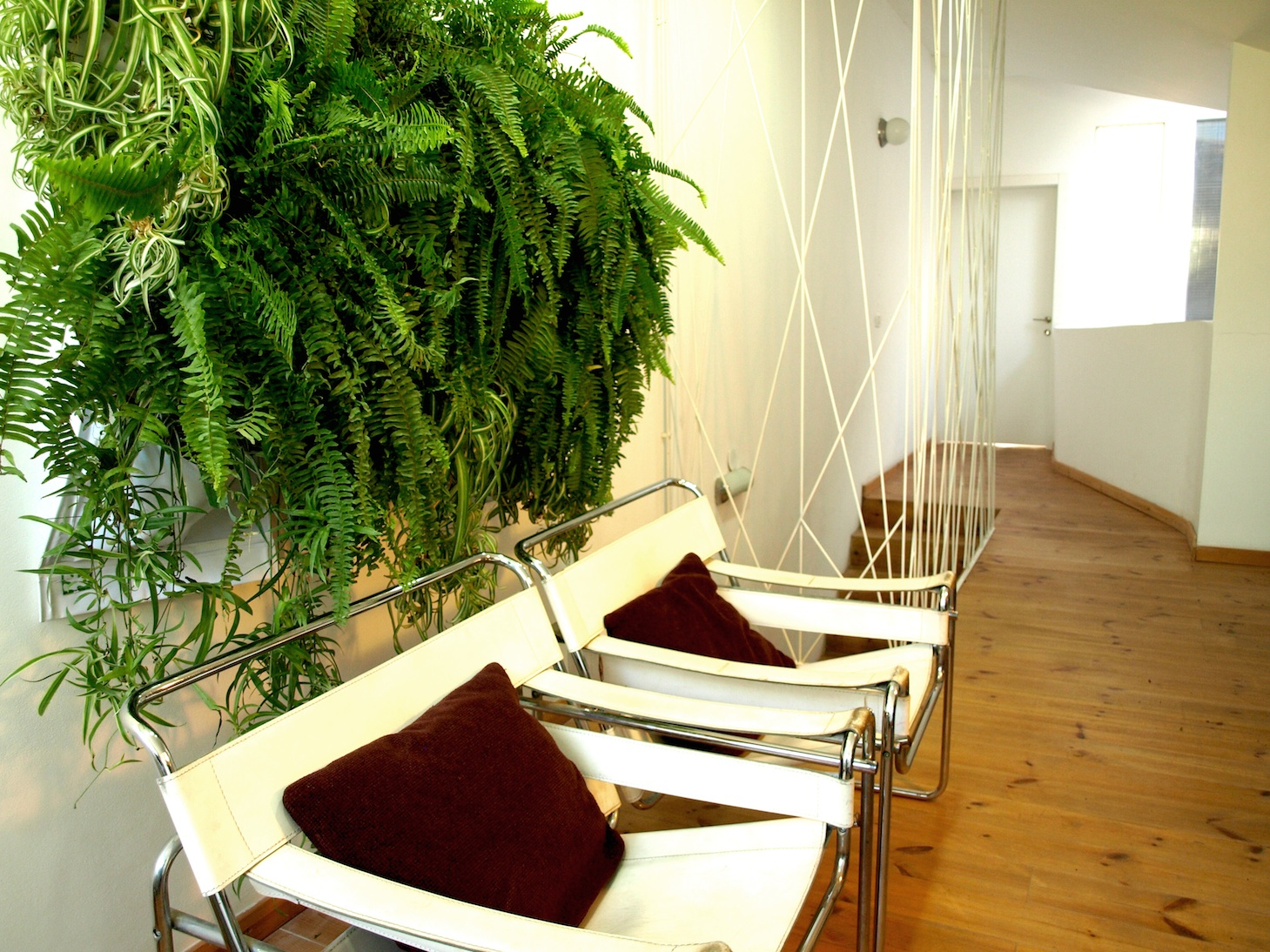 Urban interior living wall