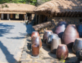 korean folk village.jpg