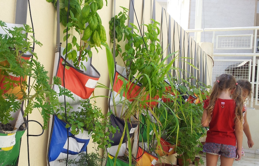 Educational herb garden