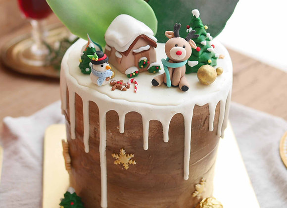 C14 House in snow dripped cake