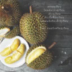 durian sesason.jpg