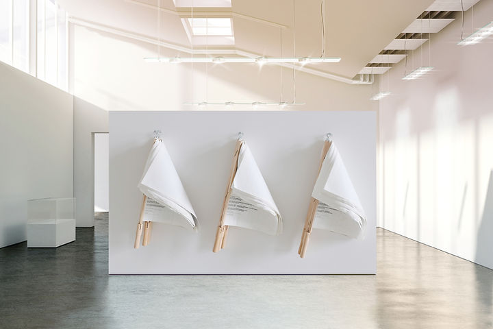Exhibited Document Flags