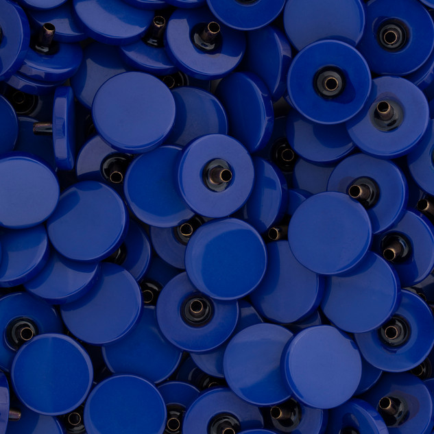 000_LARGE BLUE BUTTONS.jpg