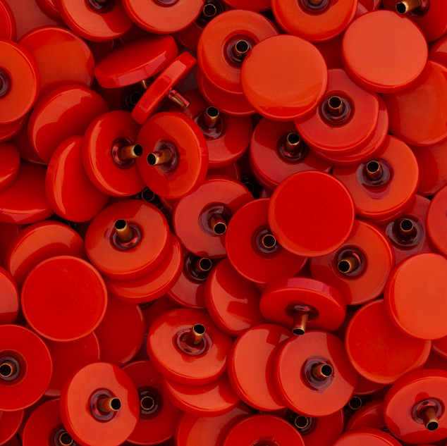 000_LARGE ORANGE : RED BUTTONS.jpg