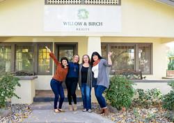 Willow _ Birch (8)