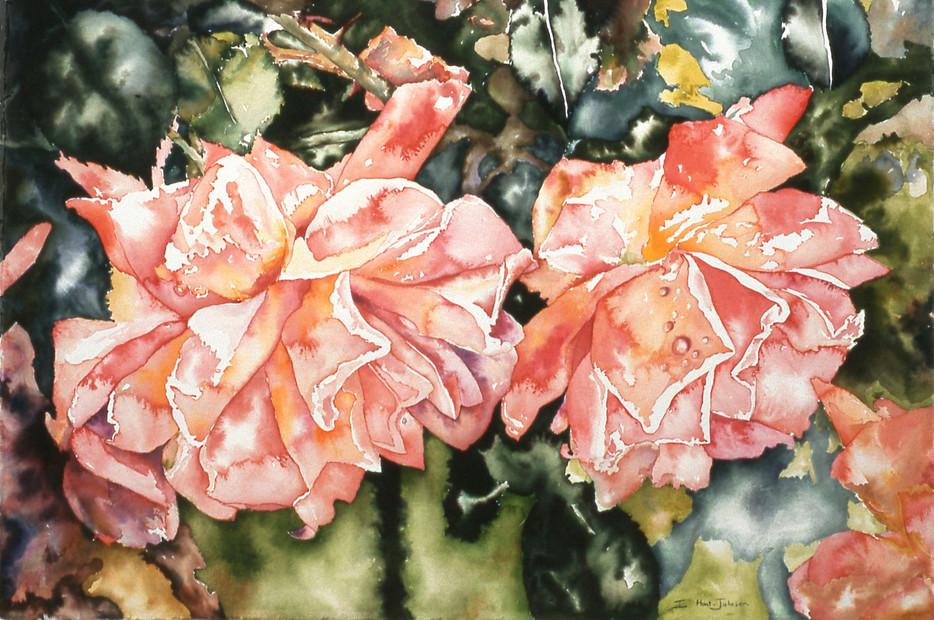 Summer Roses 30 x22