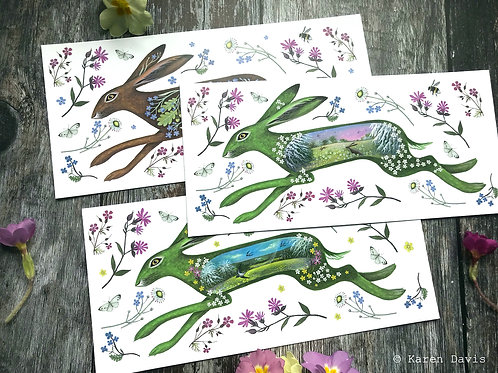 Floral Spring Hare Postcards x6