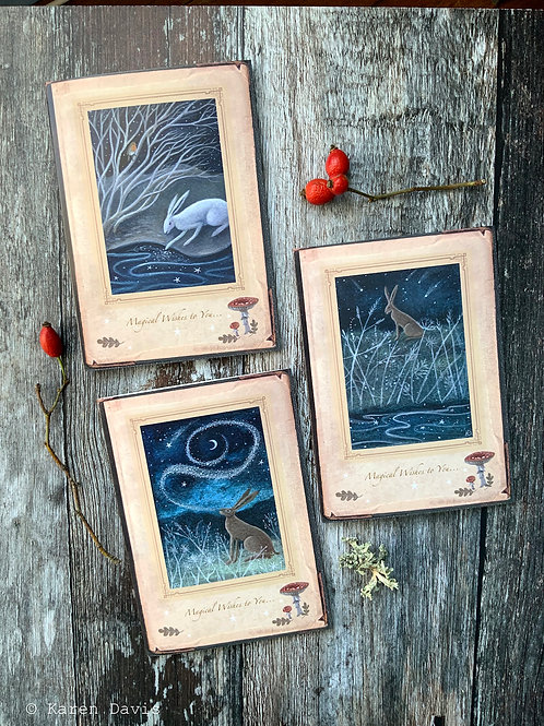 Magical Wishes Hare Greeting Cards x3