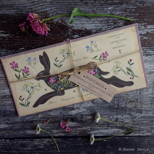Hare Hedgerow and Meadow Nature Postcards x6