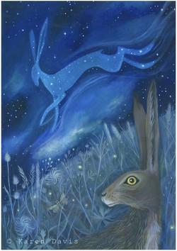 The Starlight Hare