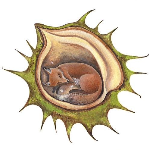 Fox Chestnut. Art Print A4/189 gms