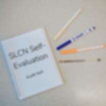 slcn self-evaluation freebie image.png