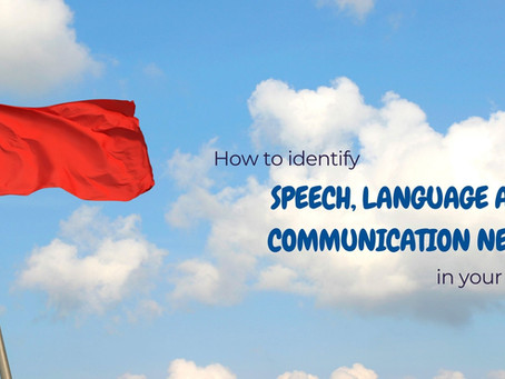 How to identify Speech, Language and Communication Needs in your school