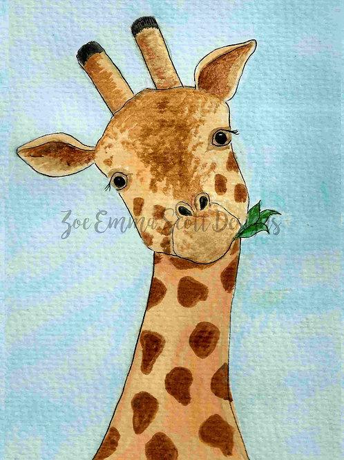 Inquisitive Giraffe!